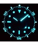 DIVER 1000 II 40MM AUTOMATIC DIVER BLACK CERAMIC BEZEL –GREY SUNRAY DIAL_
