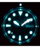 PRO TAC DIVER 1000M AUTOMATIC GREEN BEZEL BLACK DIAL BRACELET_